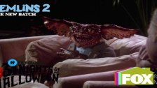 Gremlins 2: The New Batch Funny Moments - The Brai...